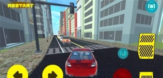 真实驾驶4(图3)