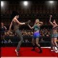 女子团体摔跤